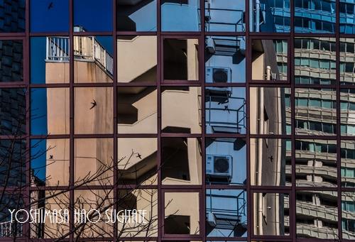 mirror500.jpg